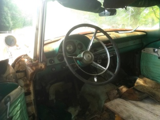 Insides of old Thunderbird rusting away in the back of a roadside cafe somewhere on GA-140.